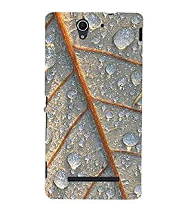 LEAF PATTERN Designer Back Case Cover for Sony Xperia C3 Dual D2502::Sony Xperia C3 D2533