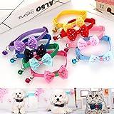 bureze für Kätzchen Puppy Hunde Katze Fliege Bell Schleife Halsbänder