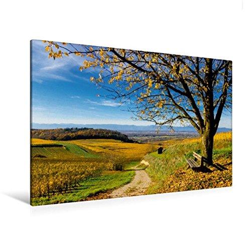 Premium Textil-Leinwand 120 x 80 cm Quer-Format Bunter Kaiserstuhl im Herbst | Wandbild, HD-Bild auf Keilrahmen, Fertigbild auf hochwertigem Vlies, ... in Richtung Vogesen (CALVENDO Natur)
