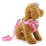 ZUNEA Puppy Weste Hundegeschirr Soft Mesh Gepolstertem Gurt und Leine Set mit Niedlichen Krone und Polka Dot Design für Kleine Pet Hunde und Katzen