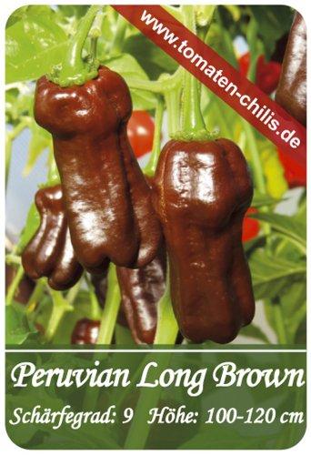 Chili Samen - 15 Stück - Peruvian Long Brown