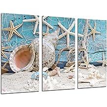 Cuadro Moderno Fotografico Paisaje Mar Vintage, Conchas, Caracolas, Playa, Arena, 97