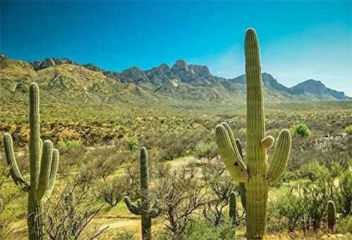 EdCott 7x5ft Western Desolate Desert Cactus Fotohintergrund West Wild Mountain Landschaft Dschungel Green Prickly Cholla Cacti Fotografie Hintergrund Reise Fotostudio Requisiten