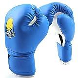 wildlead Boxhandschuhe, Kinder Handschuhe Sanda Knuckles Sandbags Taschen-Spielen Sand Kind Erwachsene Muay Thai Kickboxing Männer Kampf blau
