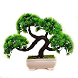 Rocita Mini Kunstn Bonsai-Baum-Simulation Gast-Gruß Kiefer Künstliche Pflanzen für Home Office Decor