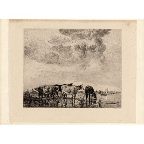 theprintscollector antico print-etching-cuyp-cow-drinking-river-sailing boat-william (Barche Bere)