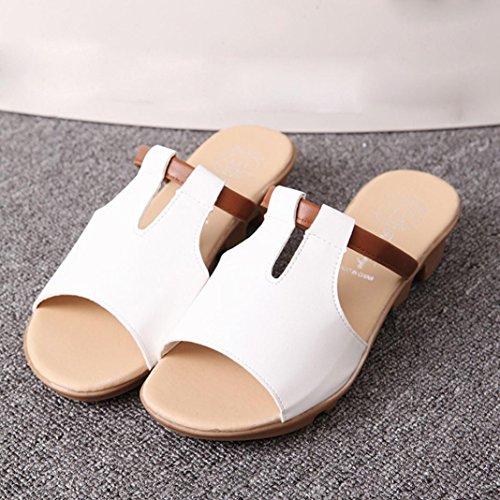 Saingace Sommer Mode Strand Slides Hausschuhe Sandalen Damen Schuhe Weiß CLy1980XIf