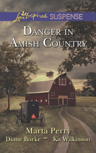 Danger In Amish Country Fall From Grace Dangerous Homecoming Return To Willow Trace Love Inspired Suspense