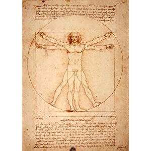Leonardo da Vincis vitruvianischer Mensch (1487) (Leinwand)