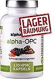 OPC Komplex alpha-OPC - Traubenkernextrakt + Pinienrindenextrakt + Hafer-Extrakt (Avena sativa) - Zink - Selen - 120 Kapseln ohne Magnesiumstearat EINWEG