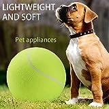 Groten Tennis Ball Kugel große riesige Hund Welpen Thrower Chucker Launcher Spielen Spielzeug C5 24CM - 2