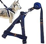 JINCHAO Arnés del Perro con correa ajustable de vaquero para mascotas perro/gato , Perro correa para pequeñas, medianas y grandes perros con seguridad caminar