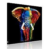 RAIN QUEEN Cute Multicolor Elefant HD Bilder Bilderrahmen Wand Bild Leinwand Kunstdruck Landschaft Holzrahmen Rahmen (50*50 cm Elefant)