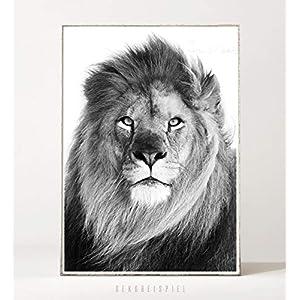 DIN A4 Kunstdruck Poster LION -ungerahmt- Löwe, Porträt, Raubkatze, Tier