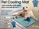 Dog Cat Pet cooler Cooling Cool Gel Mat Bed Pad 60 x 44cm Blue