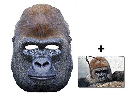Gorilla Affe Tier Single Karte Partei Gesichtsmasken (Maske) Enthält 6X4 (15X10Cm) - Hollywood Gorilla Kostüm