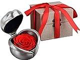 Kapmore Infinity Rosen Konservierte Rose Rosenbox Unvergängliche Rose Haltbare Rose Ich Liebe Dich Geschenke für Frauen Geschenk für Frauen