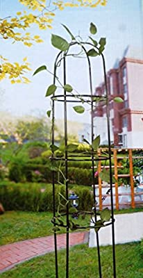 Rank-Obelisk Rosenbogen aus Metall von Sesua bei Du und dein Garten
