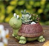 Blumentöpfe, Niedlichen Tierförmigen Cartoon Sukkulenten Vase Blumentöpfe, Container, Dekoration Pflanzer Töpfe, Schreibtisch Mini Ornament (Schildkröte)