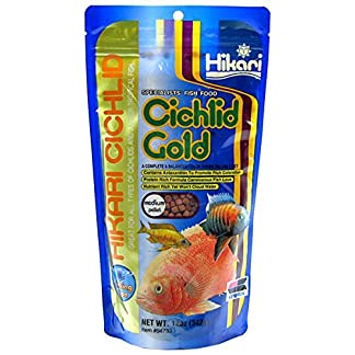 Hikari 12-Ounce Sinking Cichlid Gold Pellets for Pets, Mini 8