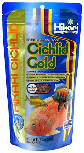Hikari 12-Ounce Sinking Cichlid Gold Pellets for Pets, Mini 1