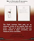 Image de The Muscular System (Flash Paks/Volumes 1 and 2)