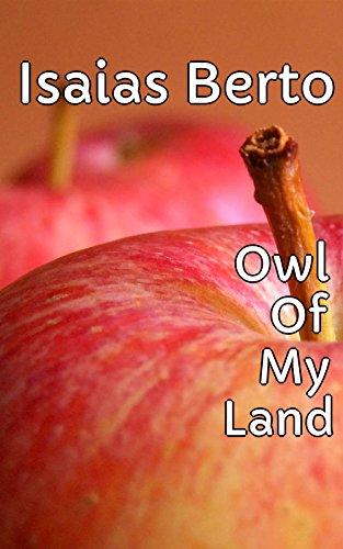 owl-of-my-land