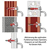 Edelstahl Wand- und Deckenbefestigung mit Edelstahlschrauben und Dübel - rostfrei - Augplatte mit Ring - Halterung / Befestigung für Sling-Trainer, Sonnensegel -