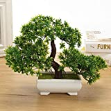 ShopMeeko Seeds:Plastic Artificial Tree Plants Ceramics Bonsai Tree Pot Culture For Office Home Living Room Furnishings Decorative : Green