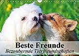 Die besten Freund Bild Alben - Beste Freunde - Bezaubernde Tierfreundschaften Bewertungen