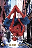 Close Up Spider-Man 2 Poster (68,5cm x 101,6cm)