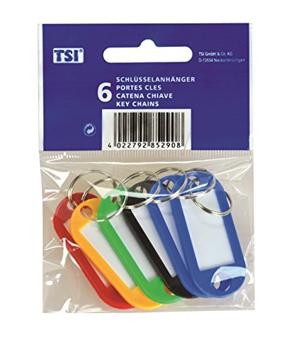 tsi-lot-de-6-porte-cles-assortiment-de-couleurs-avec-champ-dinscription
