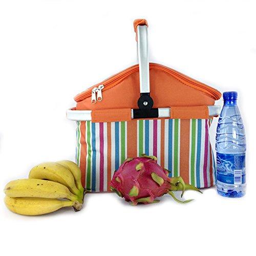 borsa-termicastoga-borsa-pranzo-isolato-pieghevole-del-dispositivo-di-raffreddamento-picnic-basket-g