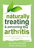 Naturally Treating & Preventing Dog Arthritis: The best decision for you and your pet