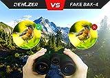 Fernglas 10x42 für Vogelbeobachtung, Jagd, Safari - HD bak4 Linsen, Wasserdicht Vergleich