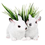 Best Gifts & Decor Garden Decors - Wonderland Two Rabbit Planter, planters, Pot, for Garden Review