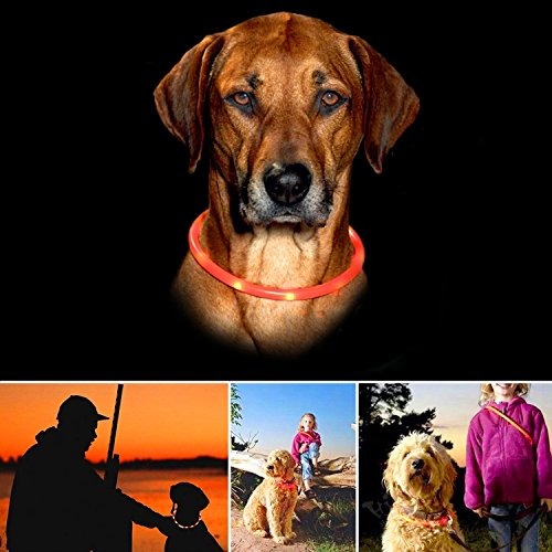 Dog-Collar-Pupow-LED-Flashing-Collar-USB-Rechargeable-Night-Safety-Collar-Waterproof-Light-up-Collar-Adjustable-Neck-Loop-Collar-red