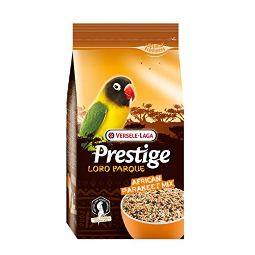 Prestige African Parrakeet Mix