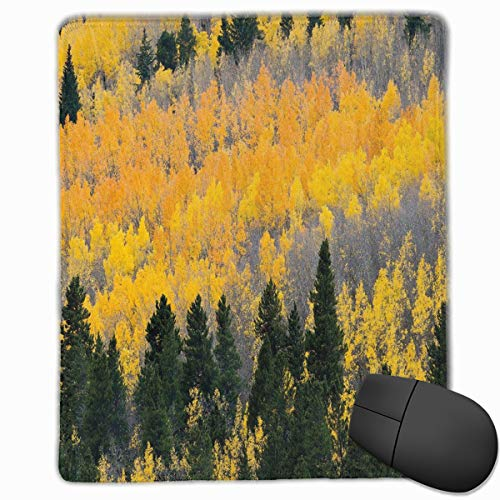 Aspen Labs (Mouse Mat Stitched Edges, Colorful Aspen Forest In Colorado Rocky Mountains Western Wilderness USA Theme,Gaming Mouse Pad Non-Slip Rubber Base)