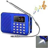 Shuzhen,Lecteur de Musique Mp3 de Mini Lecteur Portable MP3 de Carte d'USB de Haut-Parleur de Radio de FM d'affichage à Cristaux liquides avec la lumière de LED(Color:Bleu Saphir)