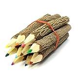 NUOLUX 12 Stück Zweig Bleistifte Buntstift für Künstler Skizze