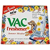 St@llion 508-Vac-AirF-Summer-Pk2-A Vac Air Freshner