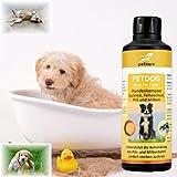 Spezial-Shampoo für Hunde - bei Juckreiz
