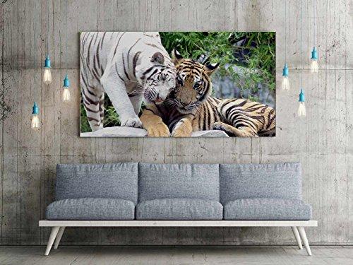 Cuadro PVC Impresión Digital Tigre Blanco Amarillo