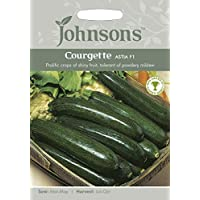 Portal Cool 2: Johnsons semillas de calabacín Astia de semillas F1