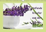 Helfende Kräuter aus dem Garten (Wandkalender 2015 DIN A4 quer): Sommerkräuter die helfende und heilende Wirkung haben können (Monatskalender, 14 Seiten)