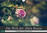 Die Welt der Alten Rosen (Wandkalender 2019 DIN A4 quer): Malerische Fotografien von alten Rosensorten. (Monatskalender, 14 Seiten ) (CALVENDO Natur)