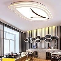 nom du produit:lustrelustre type: lampe de plafond acryliqueLumière matériaux principal: fer à repasserabat-jour matériaux principal: haute transmission lumineuse PMMA abat-jourtype de source lumineuse: LEDpeinture Artisanat:Si la l...