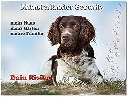 Merchandise for Fans Warnschild - Schild aus Aluminium 20x30cm - Motiv: Kleiner Münsterländer Security (01)