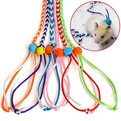 Lembeauty Verstellbar Hamster Geschirr Leine Halsband Kleine Tiere Traktion Seil für Maus Eichhörnchen Ratten Training und Going Out (zufällige Farbe) -
